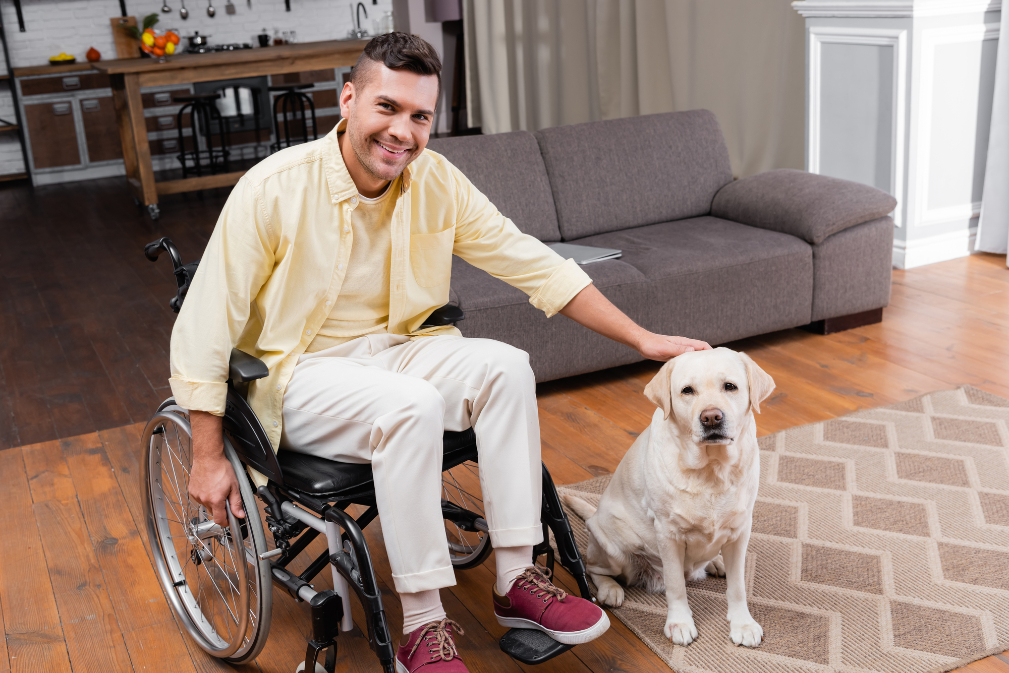 Handicapped man petting labrador dog while sitting in wheelchair at home