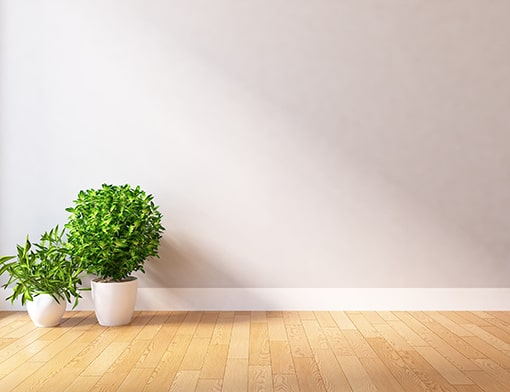 A blank wall and hardwood floor with two potted shrubs in the lower left-hand corner. This room might belong to a rental property where GTL Real Estate provided Sharpsburg property management services.
